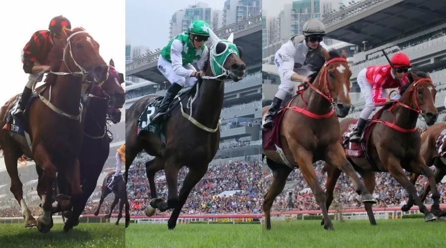 【浪琴表世界马匹排名】香港四驹继续挤身前列