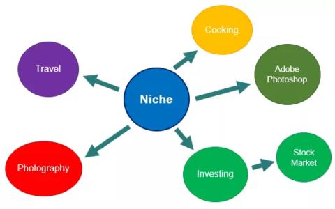 给做国外网络营销的新手朋友讲讲什么是niche利基
